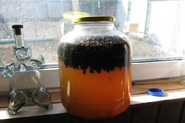 Настойка подмора пчелиного на водке
