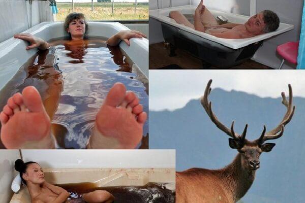 Пантовые ванны - фото