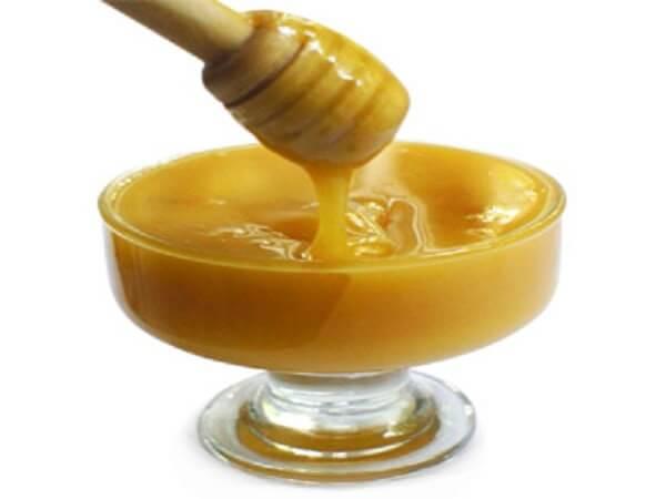 Мед с кедровой живицей - полезные свойства и применение