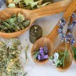 Травяные сборы от бессонницы