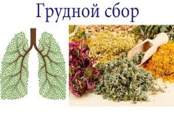 Сборы от кашля