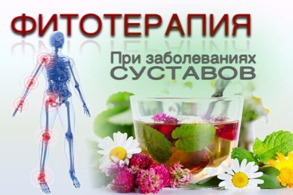 Фитотерапия для суставов