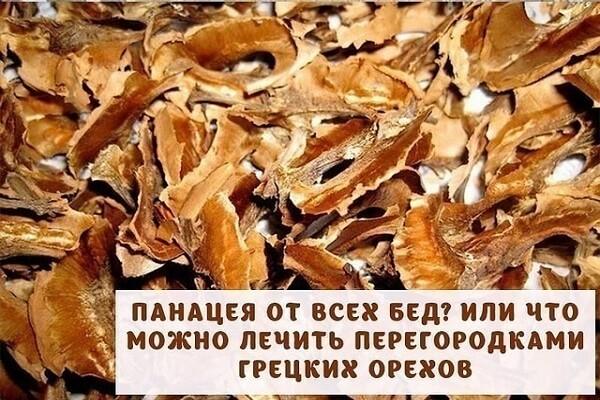 Перегородки грецкого ореха - от каких болезней